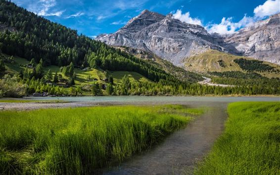 Обои Швейцария, Бернские Альпы, трава, деревья, озеро, горы, деревня