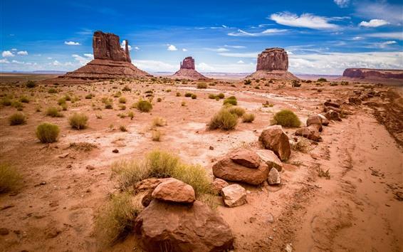 Обои США, Monument Valley National Park, скалы, природный ландшафт