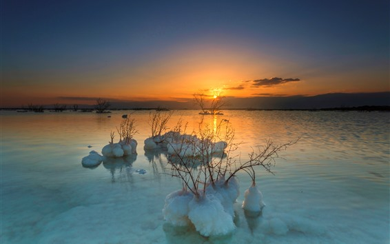 Wallpaper Dead Sea, plants, snow, sunset