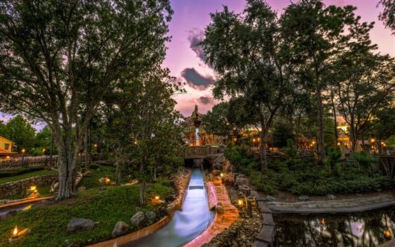 Papéis de Parede Disneyland, parque, árvores, luzes