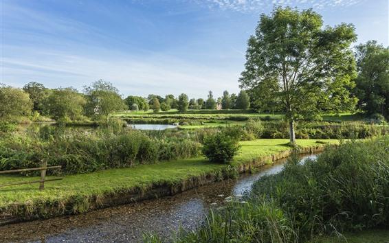 Wallpaper England, trees, river, village, summer
