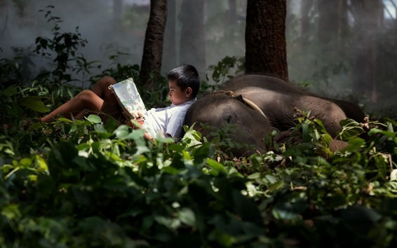 Wallpaper Little boy and elephant, forest