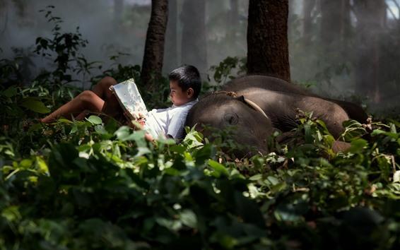 Papéis de Parede Menino e elefante, floresta