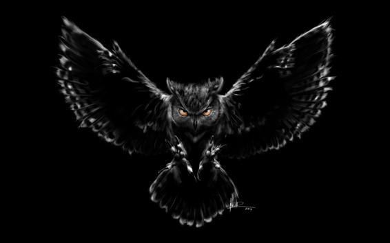Papéis de Parede Coruja, asas, voo, escuridão, imagem criativa