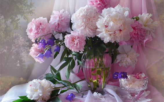 배경 화면 분홍색 모란, 꽃, 꽃병
