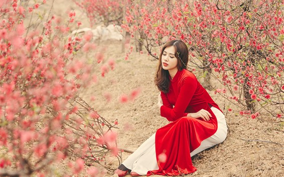 Wallpaper Red dress Chinese girl, pink flowers, trees, spring