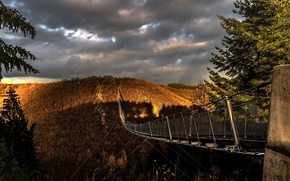 壁紙 吊り橋、山、秋