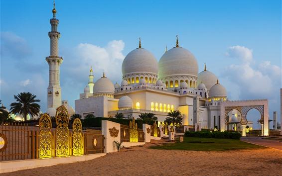 Обои ОАЭ, Абу-Даби, купольный дворец, сумерки
