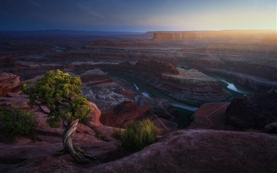 Fond d'écran Usa, canyon, rochers, rivière, brouillard, matin