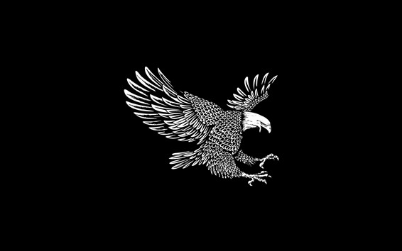 Wallpaper Eagle, wings, flight, black background, art picture