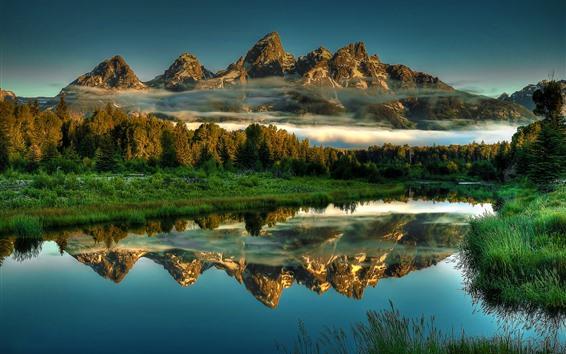 Обои Национальный парк Гранд-Титон, озеро, горы, отражение воды, красивые пейзажи