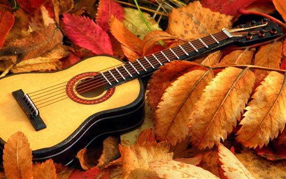 Fond d'écran Guitare, feuilles, automne