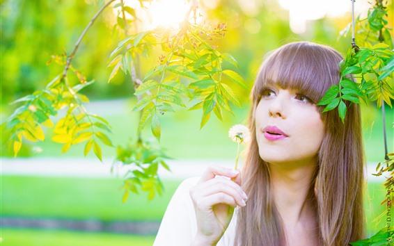 Обои Длинноволосая девушка, одуванчик, зеленая листва