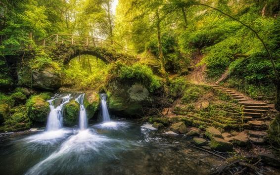Fond d'écran Luxembourg, échelle, cascade, pont, arbres, ruisseau, vert