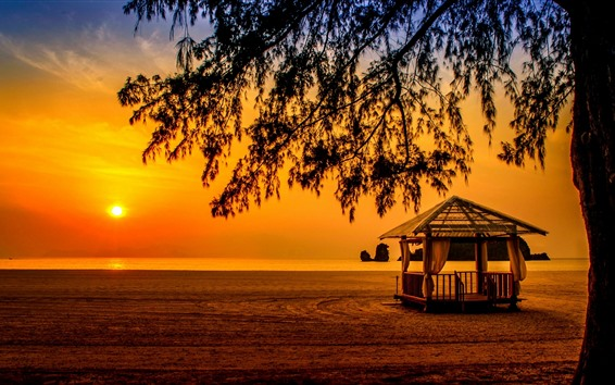 Wallpaper Malaysia, Andaman Sea, Langkawi, sea, tree, sunset, silhouette