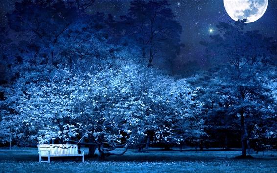 Wallpaper Moon, bench, tree, flowers, night, starry