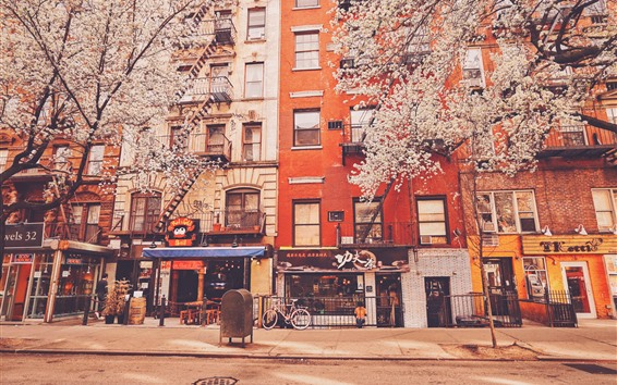 Wallpaper New York, stores, apartments, road, trees, flowers, USA