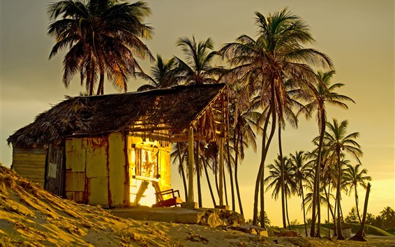 Wallpaper Palm trees, hut, sunset, tropical