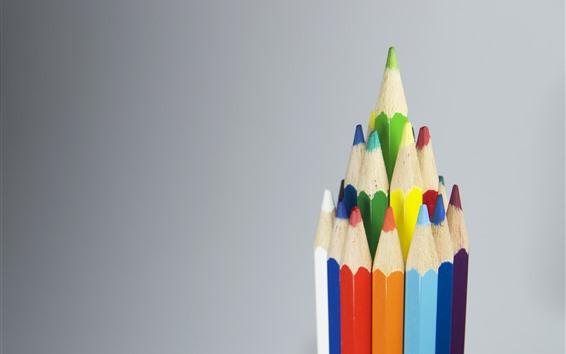 Обои Некоторые цветные карандаши, серый фон