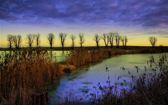 Fondos de pantalla Algunos árboles, juncos, nubes, otoño, río, anochecer