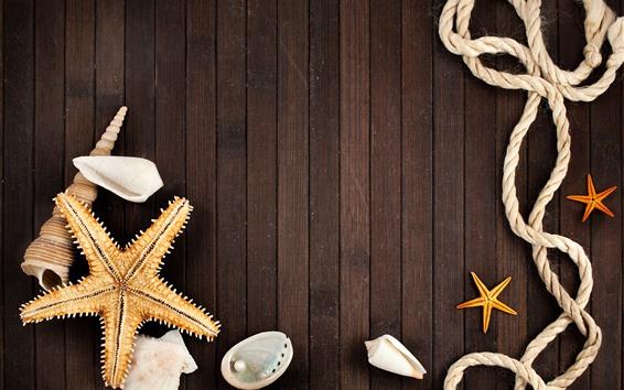 Papéis de Parede Estrela do mar, concha, pérola, corda