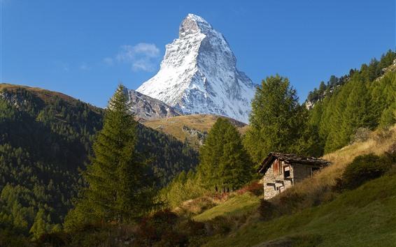 Papéis de Parede Suíça, zermatt, alpes, montanha, árvores, casa