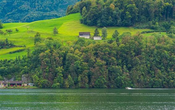 壁紙 スイス、緑の斜面、木、川、家、美しい