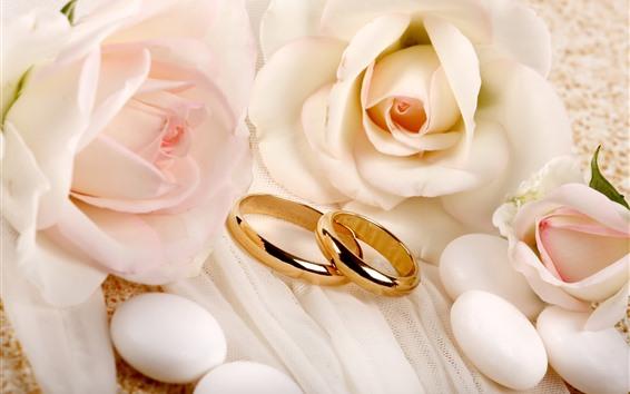 Fondos de pantalla Un par de anillos de oro, rosas rosadas, románticas