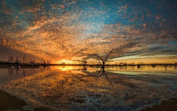 Papéis de Parede Austrália, campbell, pântano, lago, pôr do sol, nuvens