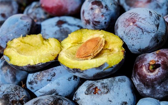 Обои Свежие сливы, фрукты