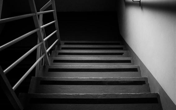 Обои Лестница, черно-белая картина