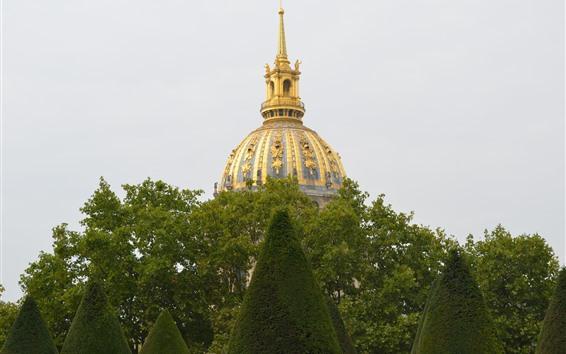 Papéis de Parede Paris, França, árvores verdes