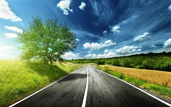 Обои Дорога, деревья, солнечные лучи, небо, облака