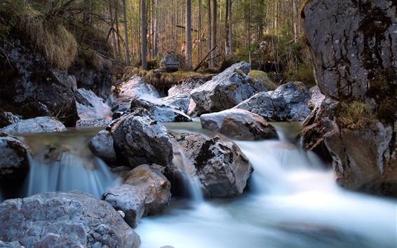Обои Скалы, ручей, лес