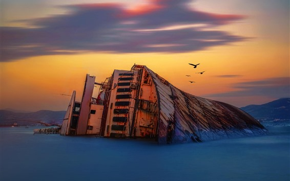 Wallpaper Shipwreck, birds, sea, dusk
