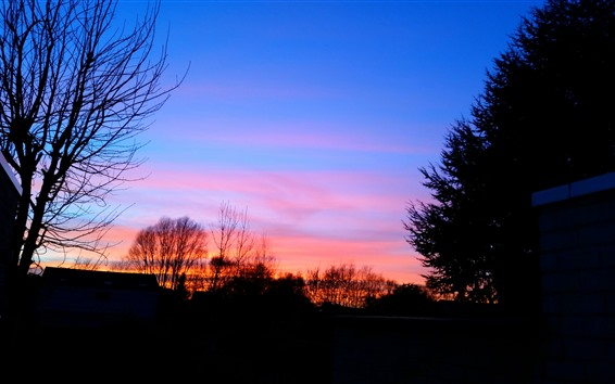 Papéis de Parede Pôr do sol, silhueta, árvores, casa, céu, cores