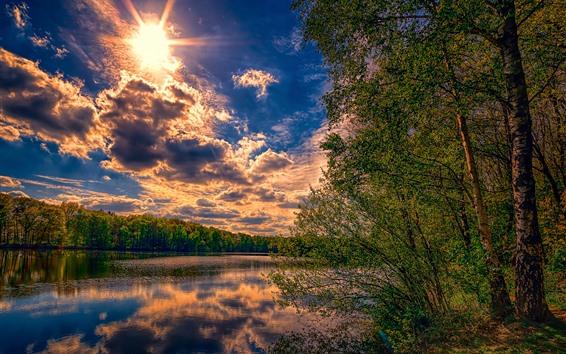 Обои Деревья, солнце, облака, река, природа, пейзаж