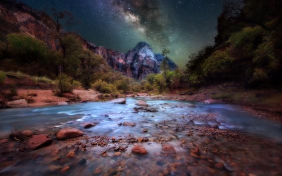 Обои Национальный парк Зайон, горы, звёзды, ночь, деревья, США