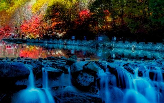 Fond d'écran Automne, arbres, ruisseau, rochers
