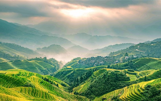 Wallpaper Beautiful Longsheng Terrace, sun rays, green, Guangxi, China