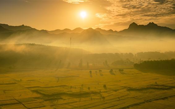 Wallpaper Beautiful golden rice fields, morning, sunrise, sun rays, mountains