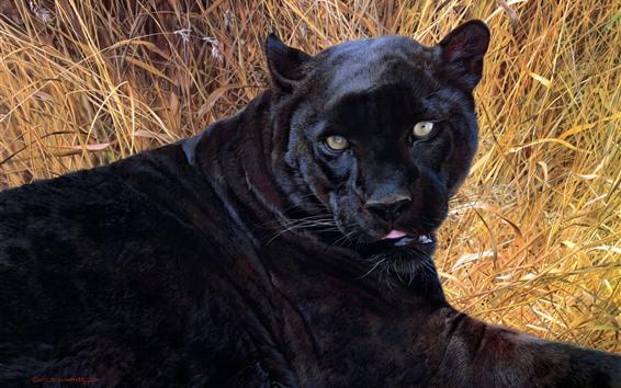 Papéis de Parede Pantera negra, descanso, grama