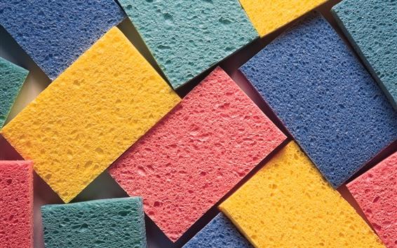 Fond d'écran Éponge colorée
