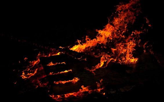 Fondos de pantalla Fuego, llama, leña, fondo negro