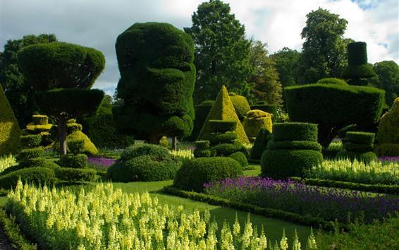 壁紙 庭、茂み、緑