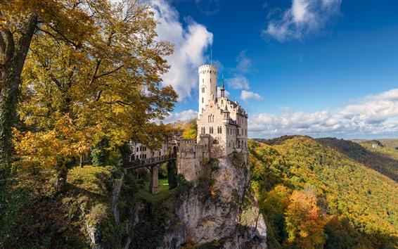 Обои Германия, замок, деревья, осень, скалы
