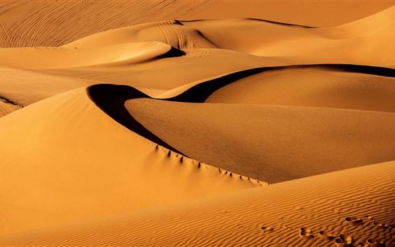 배경 화면 금태 사막, 신장