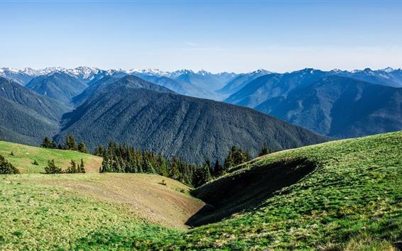Обои Горы, вершины, зелень, солнце, пейзаж природы