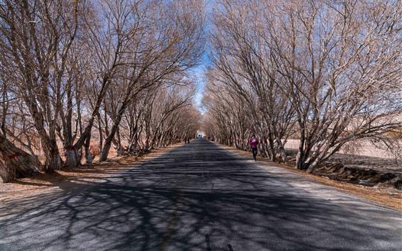 Hintergrundbilder Pamir-Hochebene, Bäume, Straße, Winter