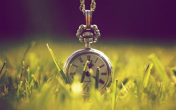 Wallpaper Pocket watch, grass